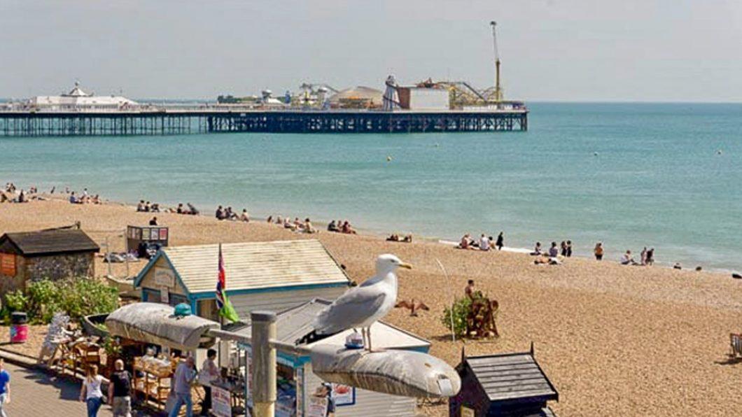 Vegan Food Guide: Brighton